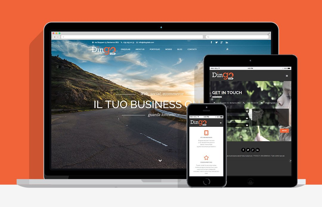sito-responsive-dingolab-web-agency-bergamo