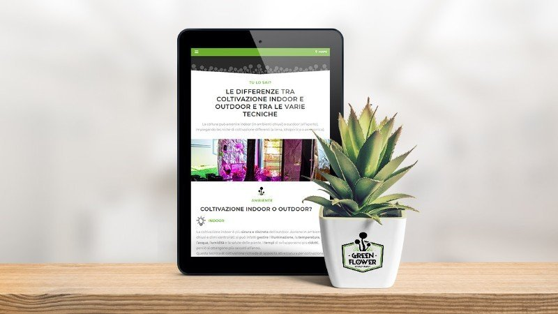 green-flower-mockup-tablet