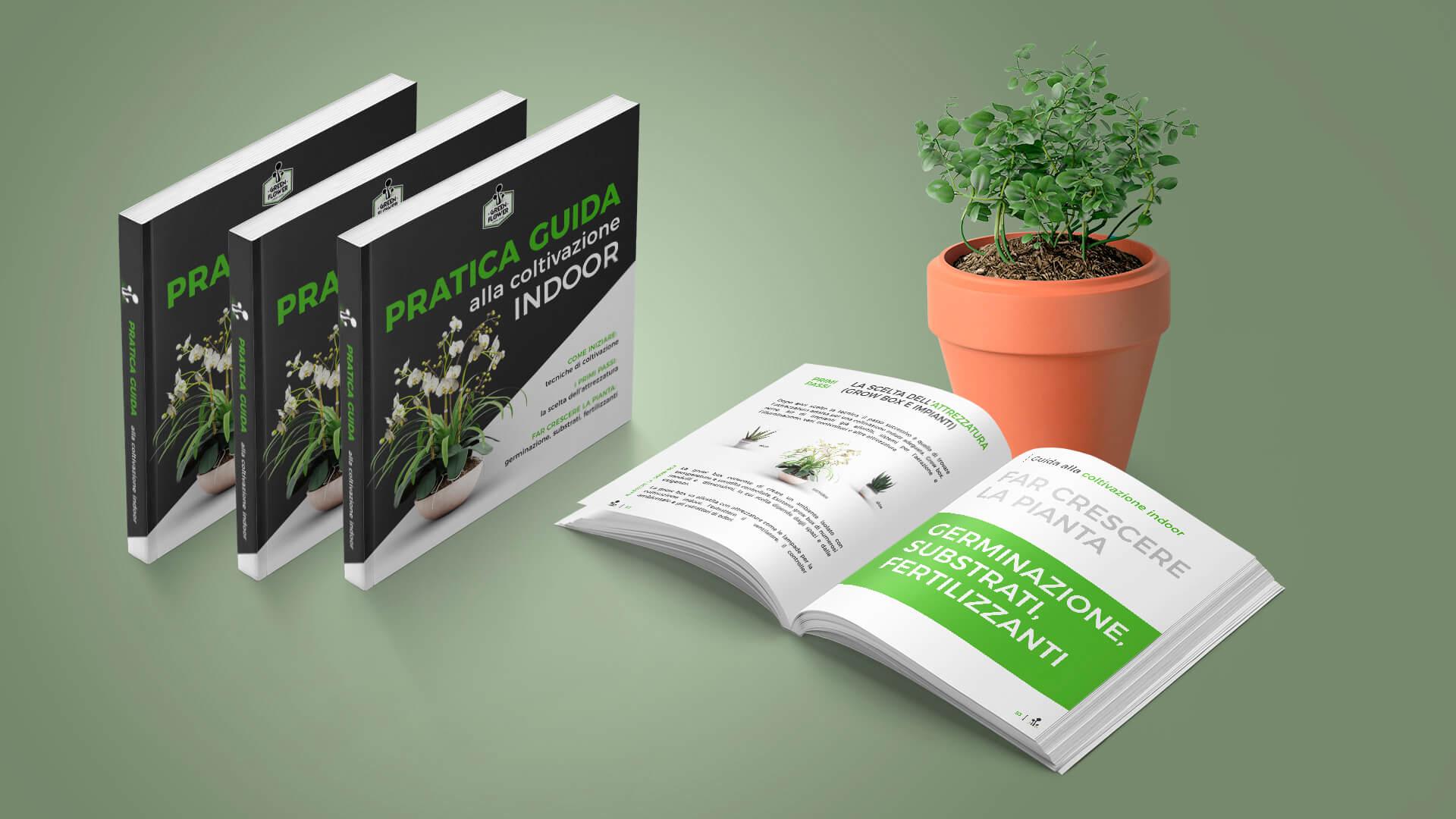 guida-coltivazione-indoor-verde